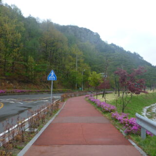 korean academic and scientific translation - Along Section 6 of the Chirisan Doollae-Gil (1 of 7) – Sancheong City to Sungsimwon